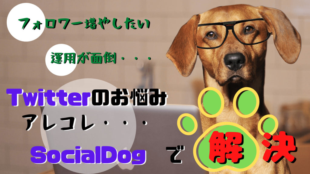 Twitter伸び悩み&効率化@『SocialDog(ソーシャルドッグ)』